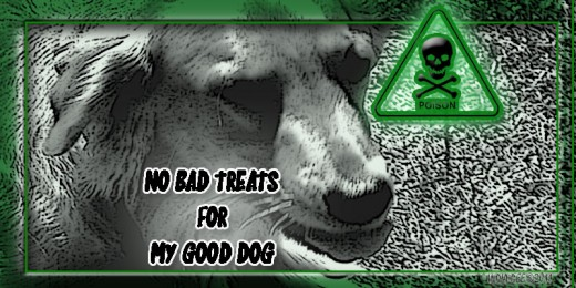 10 Bad Treats for Your Dog Poster