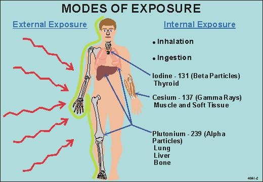 Internal and External Exposure Sources