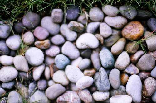 Photos of rocks taken with my Nikon FE Film SLR