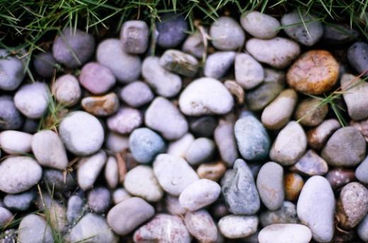 Photos of rocks taken with my Nikon FE Film SLR