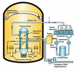 Schematic representation of a boiling water reactor.