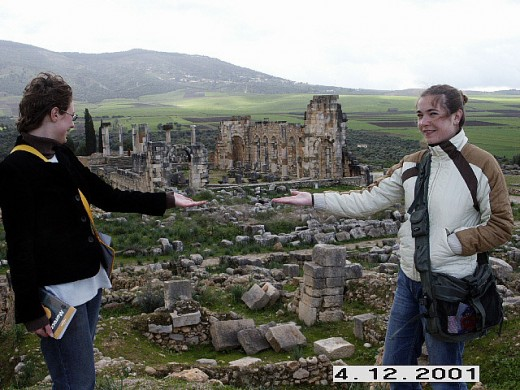 World Heritage Site of Volubilis, the Roman Ruins of Morocco. Easy to visit as a day trip from Meknes.