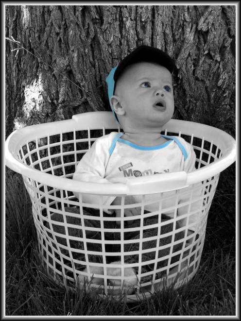 A Basket For A Prop! This Photograph Was Enhanced In Adobe Photoshop