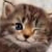 OriginArtz profile image