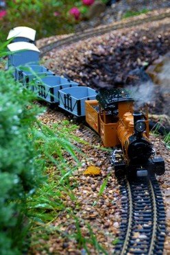Garden Railways : Electric, Live Steam or Battery Powered Locomotives