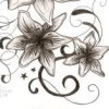 beckart profile image