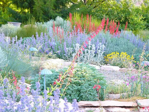 Water efficient landscapes can be beautiful this is an  example of a xeriscape garden.