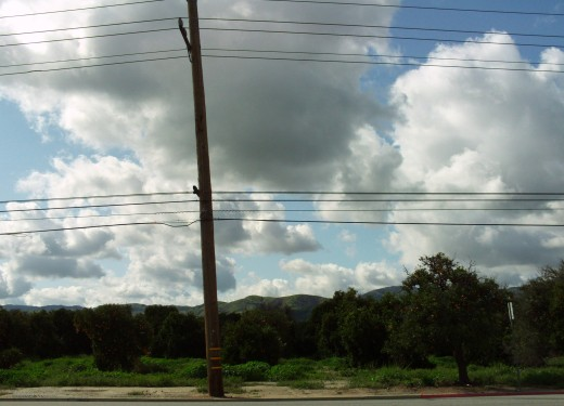 Another picture of the old orange field in Loma Linda, with an interesting telephone pole in the view.