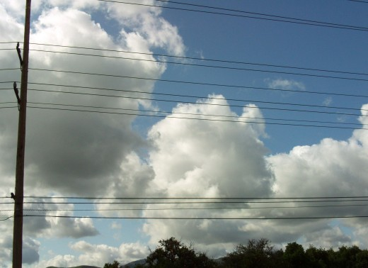 I love the cloud formations above the orange field.