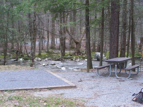 Elkmont campsite on Little River