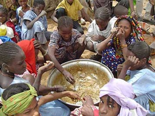 Hardin argues that it is not morally wrong to ignore hunger and famine in foreign countries.