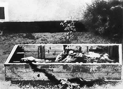 Only alleged real picture of Hitler's remains