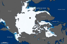 The lowest January sea ice extent ever occurred in 2011.