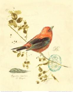 THE LITTLE BROWN BIRD LEFT