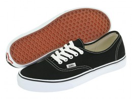 Vans Authentic Core Classics Skate Shoe