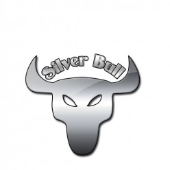 The Silver Bull - How to invest in silver, for any budget.