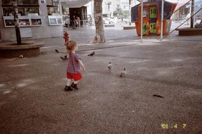 Sword chases pigeons in Dizingoff Square, Tel Aviv.