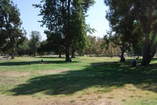 Mammoth Griffith Park