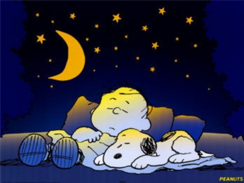 Even snoopy and Charlie Brown need their beauty rest.