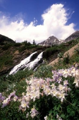 A Colorado hillside, hot days, cold nights