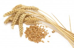A Gluten-Free Diet and Psoriasis