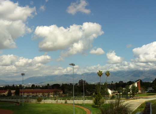Palm trees and the mountains make for a very scenic view.