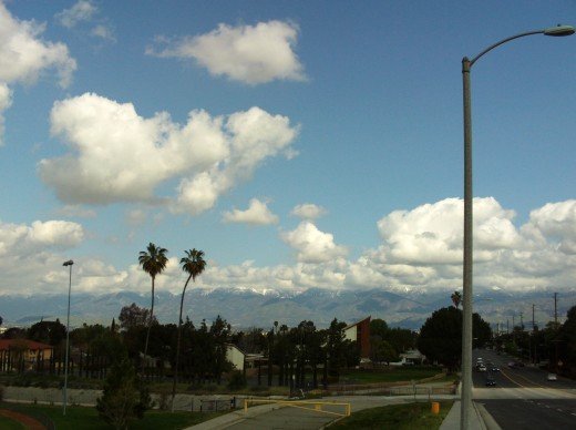 Another picture of two palm trees with the San Bernardino Mountains and clouds in the background.