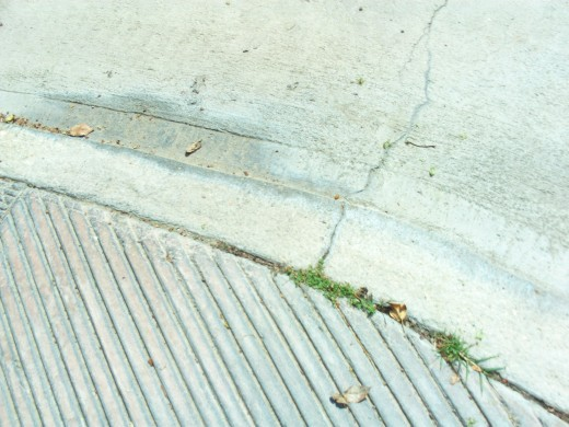 Looking down at the sidewalk as I walk.  This accidental photograph records a moment in time.