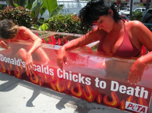 PETA takes on McDonalds