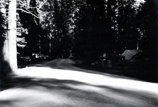 Road into a campground, circa 1957