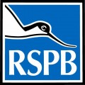 RSPB recycling appeal