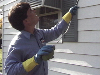 Houston Pest Control And Termite Services