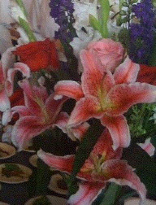 Stargazer lilies fill a room with their heady floral scent.