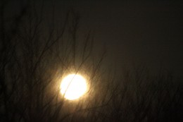 Shutter speed is too fast, resulting in a bright white circle of light.