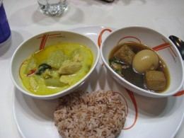 Green curry chicken, tofu with egg and brown rice