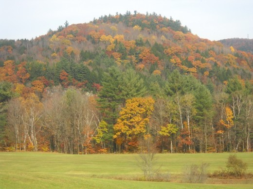 Autumn Leaves paint the Green Mountains across the valley from our Royalton Bed and Breakfast.