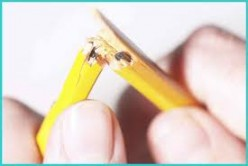 Chronic Stress--Hazardous to Your Health
