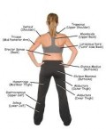 Get Muscle Mass With Strength Training