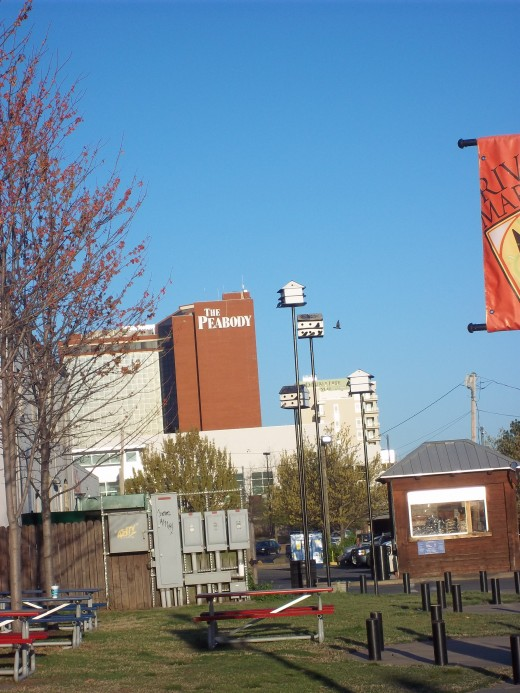 A photo of the Peabody Hotel, from the Little Rock, River Market area, downtown, Little Rock, ARkansas
