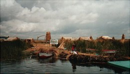 Approaching a reed island