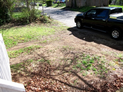 Since Spring has finally made it upon us, I planted some grass seed in our pitiful looking front yard.