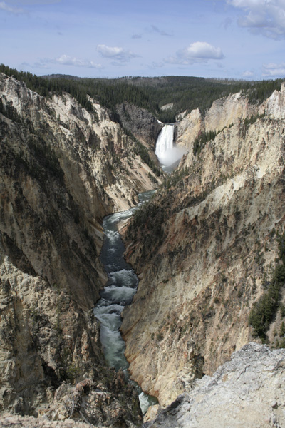 Distant view of lower falls at Yellowstone