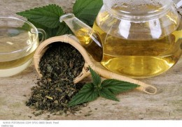 You can make nettle tea at home or purchase it from a health store or online.