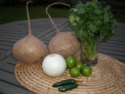 Ingredients for Jicama Cocktail, a raw food delight: jcamas, cilantro or coriander, limes, onion and Chiles Serrano