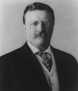 Teddy Roosevelt ran under a third party and lost, not because he was a bad candidate, but because it split the republican vote. What incentive is enough for us to vote for a third party?