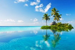 How To Survive A Timeshare Presentation: The secrets and process you need to know!