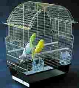 These birds are far too confined