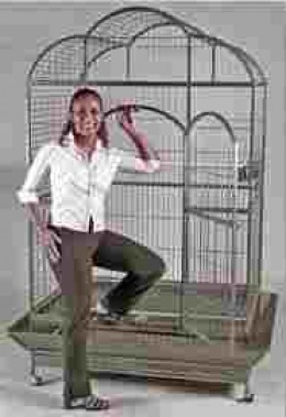 Now, that's a bird cage to be proud of!