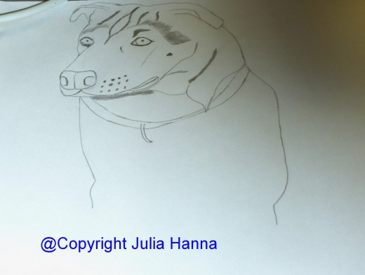 Here I am beginning to add more of the detail to Buster's front legs.