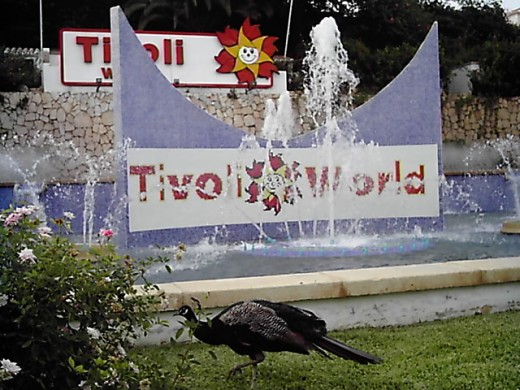 Tivoli World, Benalmadena, Costa del Sol
